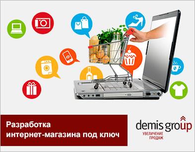 99d77083c6d1 Разработка интернет-магазина под ключ от Demis Group   Заказать ...